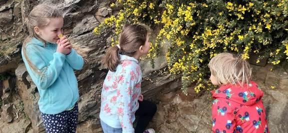 Children Noticing Nature